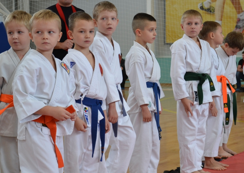 соревнования по карате