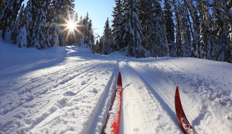 на лыжи
